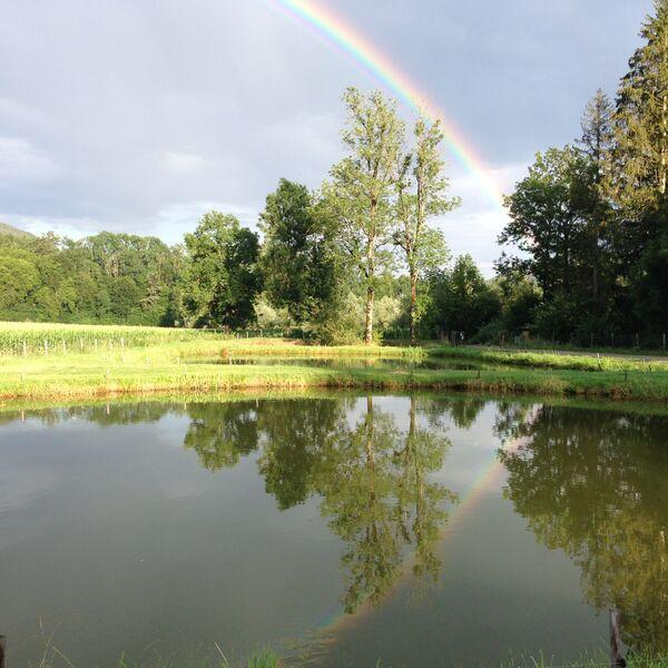 nach Regen kommt Sonnenschein und mit ihm der Regenbogen