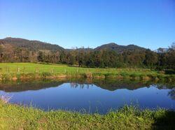Teich im Farbenspiel der Natur
